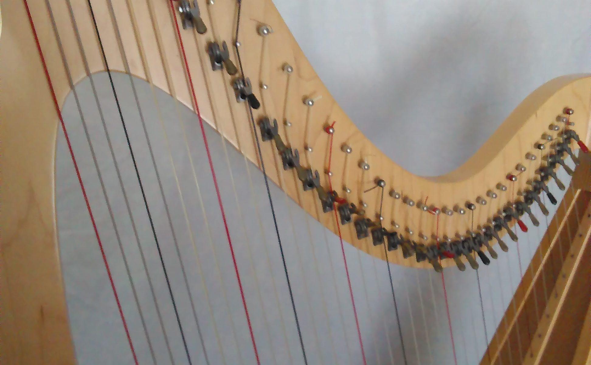 Harp Instruction Archives Harpinmotion